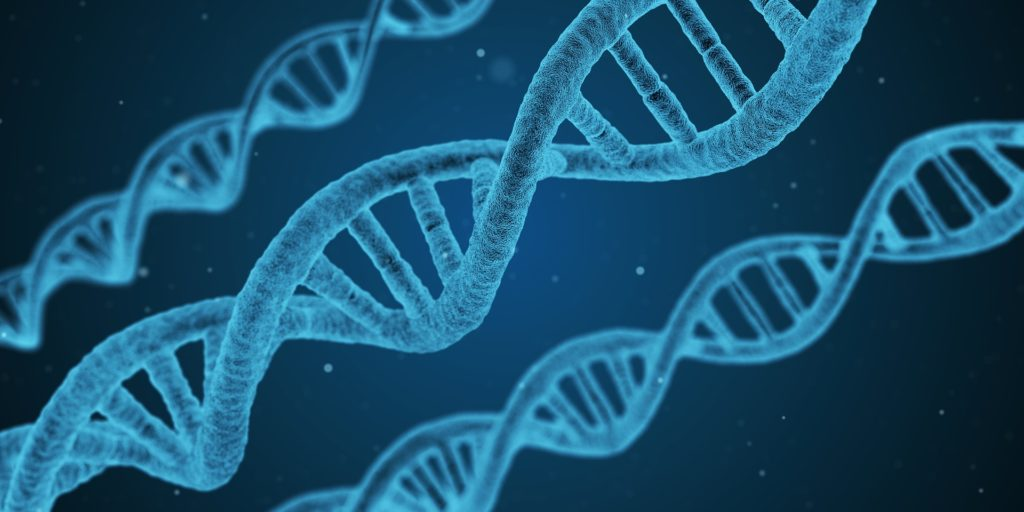 Nutrigenomics – Facts about Your Genes, Diet and Health