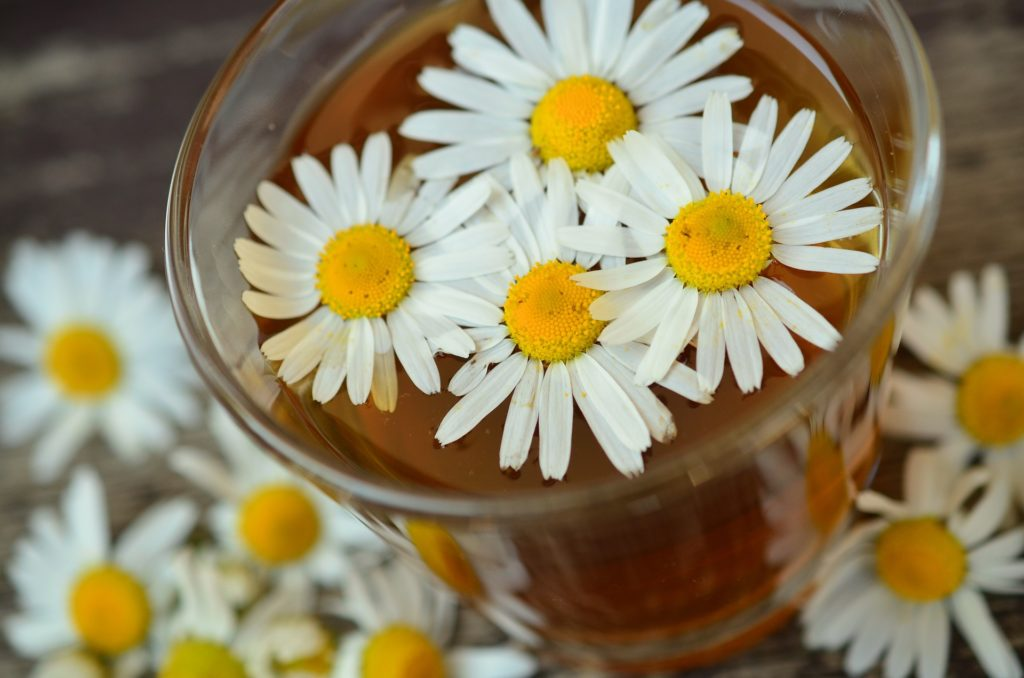 Top Naturopathy Centres in India